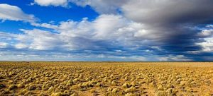 Pampa, Argentina, South America, Landscape, Steppe, clouds. Pampa, Argentina, South America, Landscape, Steppe, clouds