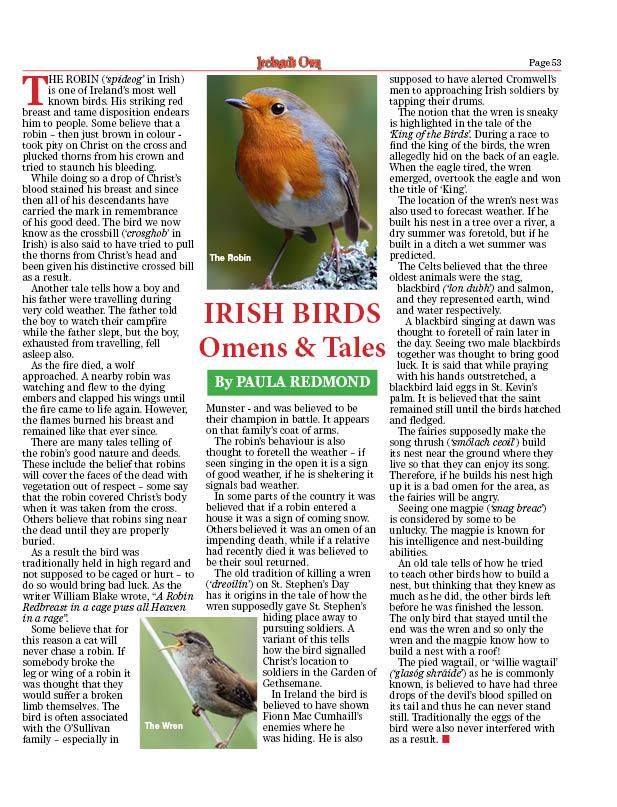 irishbirds